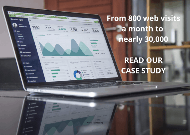 search engine optimization consultants - case study