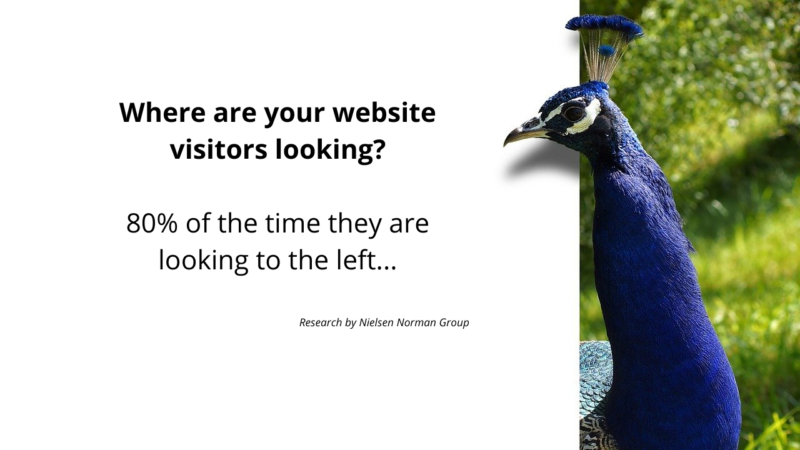 Where are visitors looking